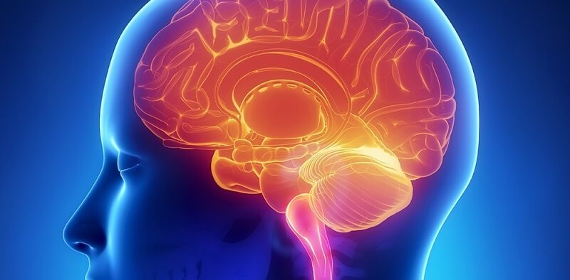 Cerebrovascular Surgery in Pune